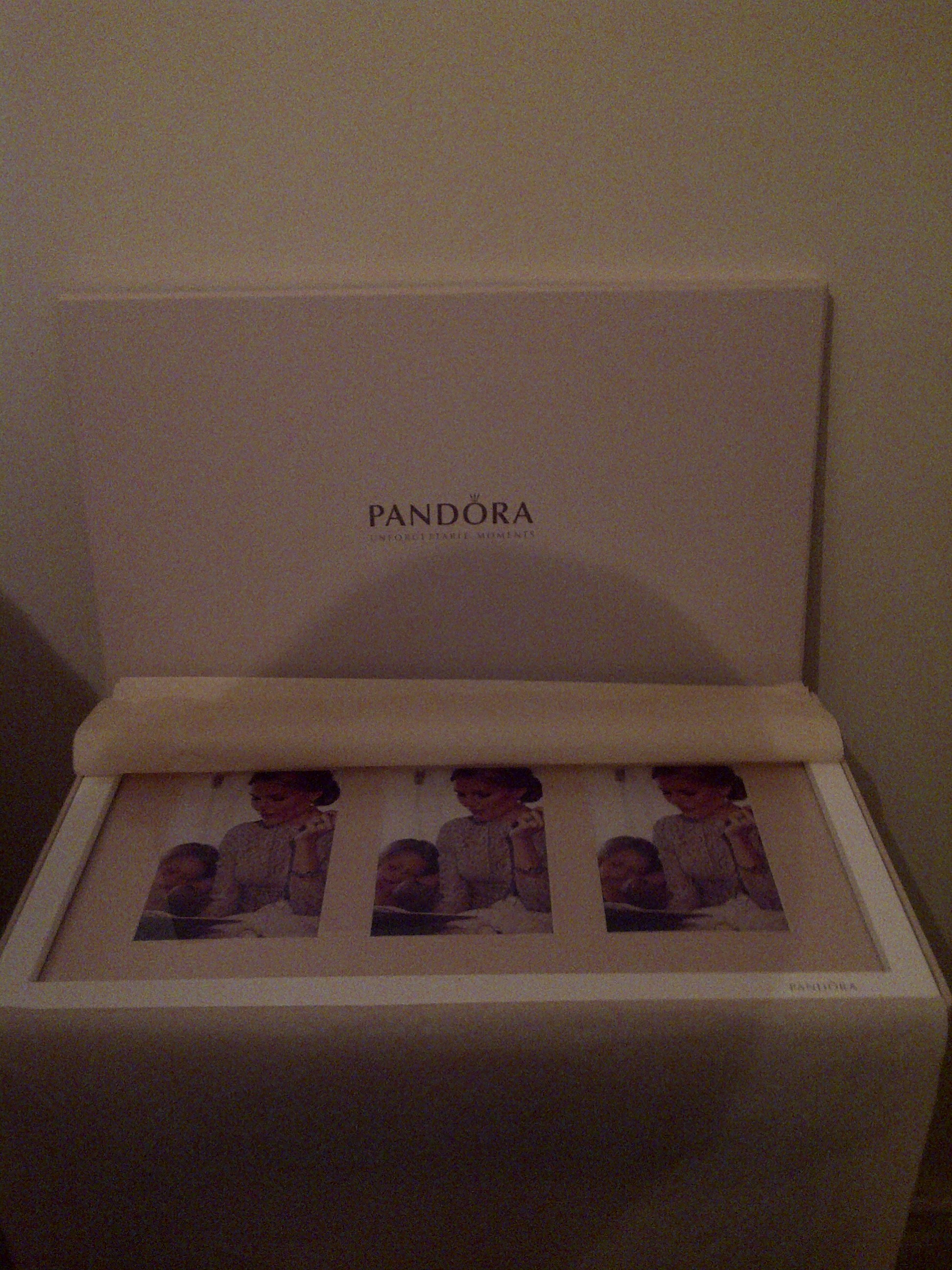Pandora Picture Frame2