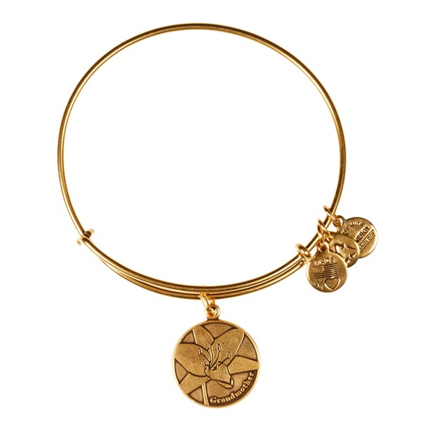 Alex and ani for mother s day charms addict