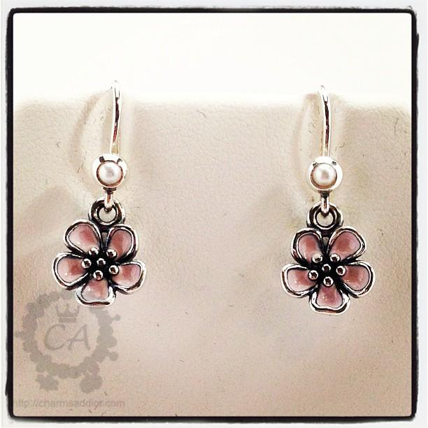 Pandora flower earrings flowers healthy pandora cherry blossom earrings mightylinksfo