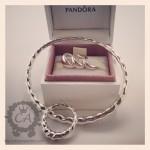 pandora-cruise-2013-purchases1