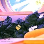 pandora-cruise-2013-swag-bags