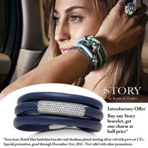 story-promotion-2013