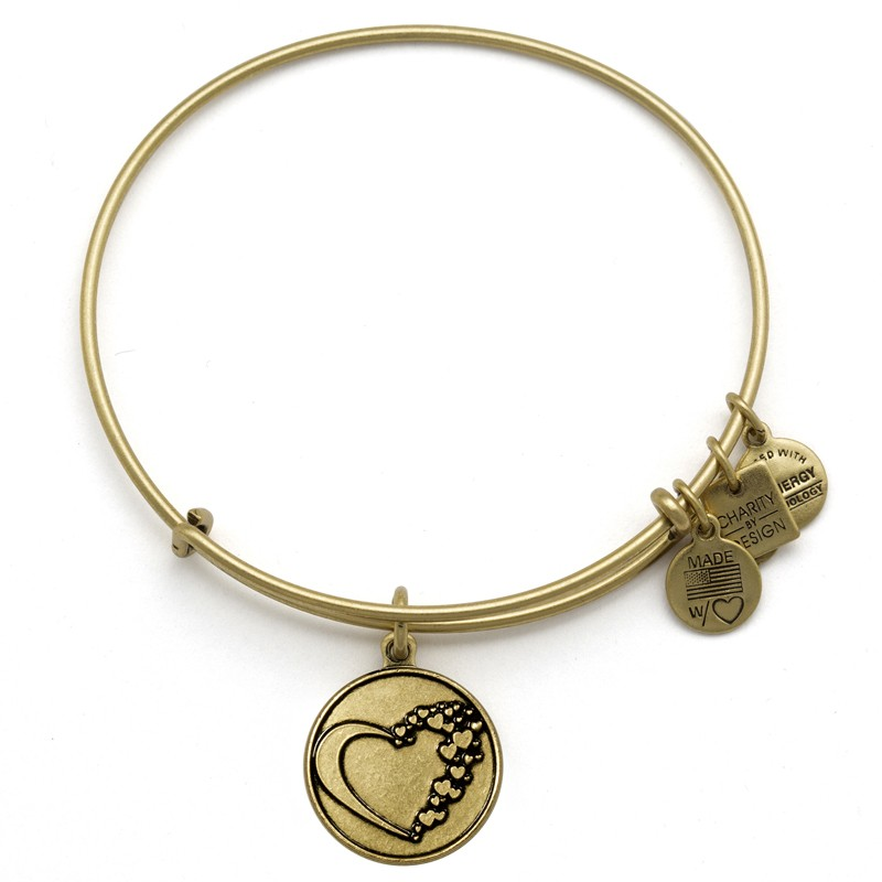 Alex and ani whole heart charity by design charms addict