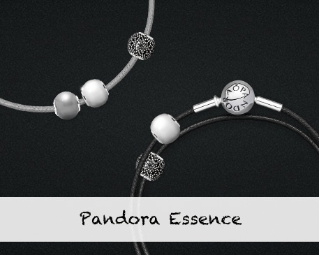 Pandora Spring 2014 Essence Bracelets