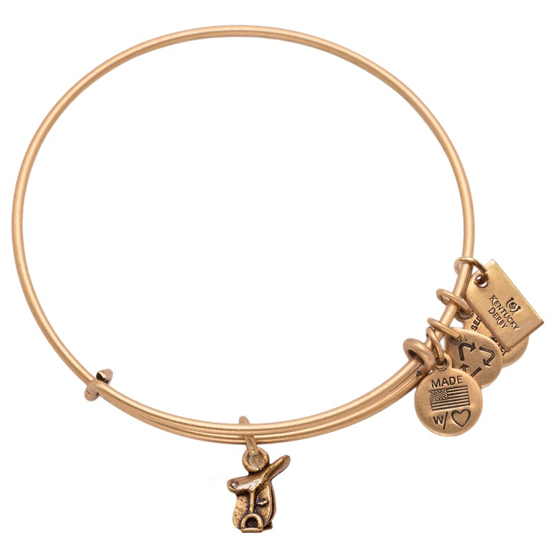 Alex and ani kentucky derby 2014 charms addict