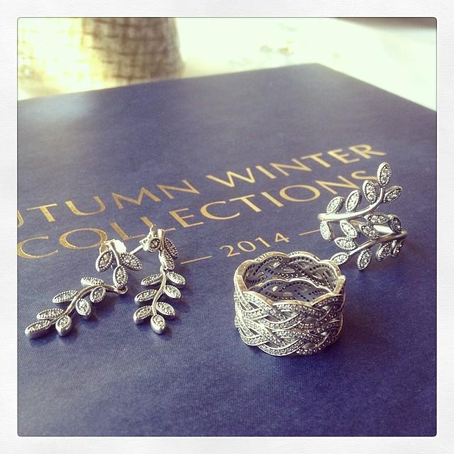 Upcoming Pandora Jewelry Promotions: Pandora Autumn 2014 Jewelry Sneak Peek