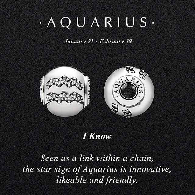 Aquarius Pandora Charm