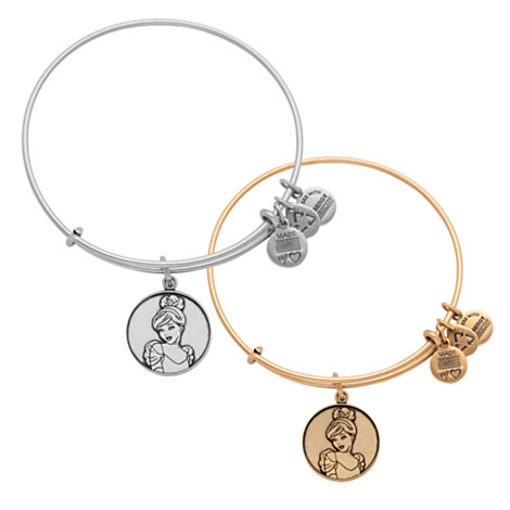 Alex and ani disney collection additions charms addict