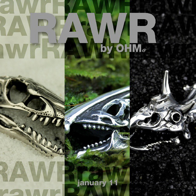 Ohm Beads Rawr Collection Review