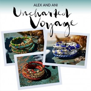 alex-ani-unchartered-voyage-cover