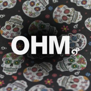ohm-beads-day-of-the-dead-cover