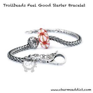 trollbeads-feel-good-starter-bracelet1